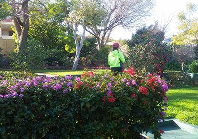 service garden care