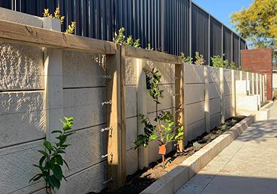 pavign walls